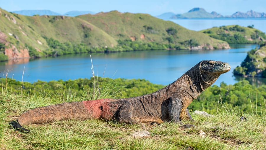 http___cdn.cnn.com_cnnnext_dam_assets_190830180045-06-worlds-most-beautiful-islands