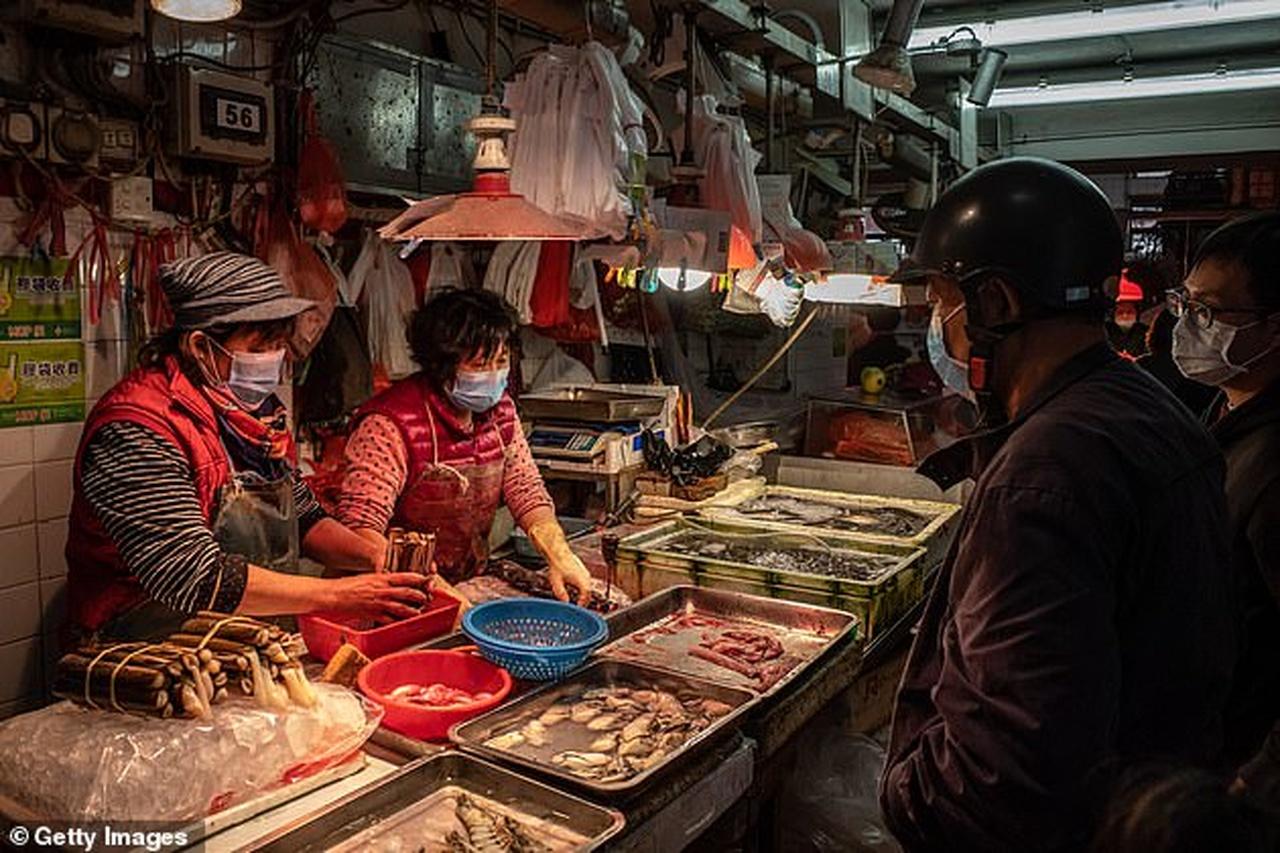 بازار فروش حیوانات وحشی در ووهان