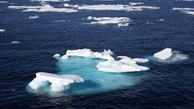 Climate Change Hitting Top U.S. Fishery in the Arctic, NOAA Report Says