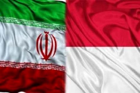 پرتامینا: ایران منبع جدید تامین گاز مایع اندونزی شد