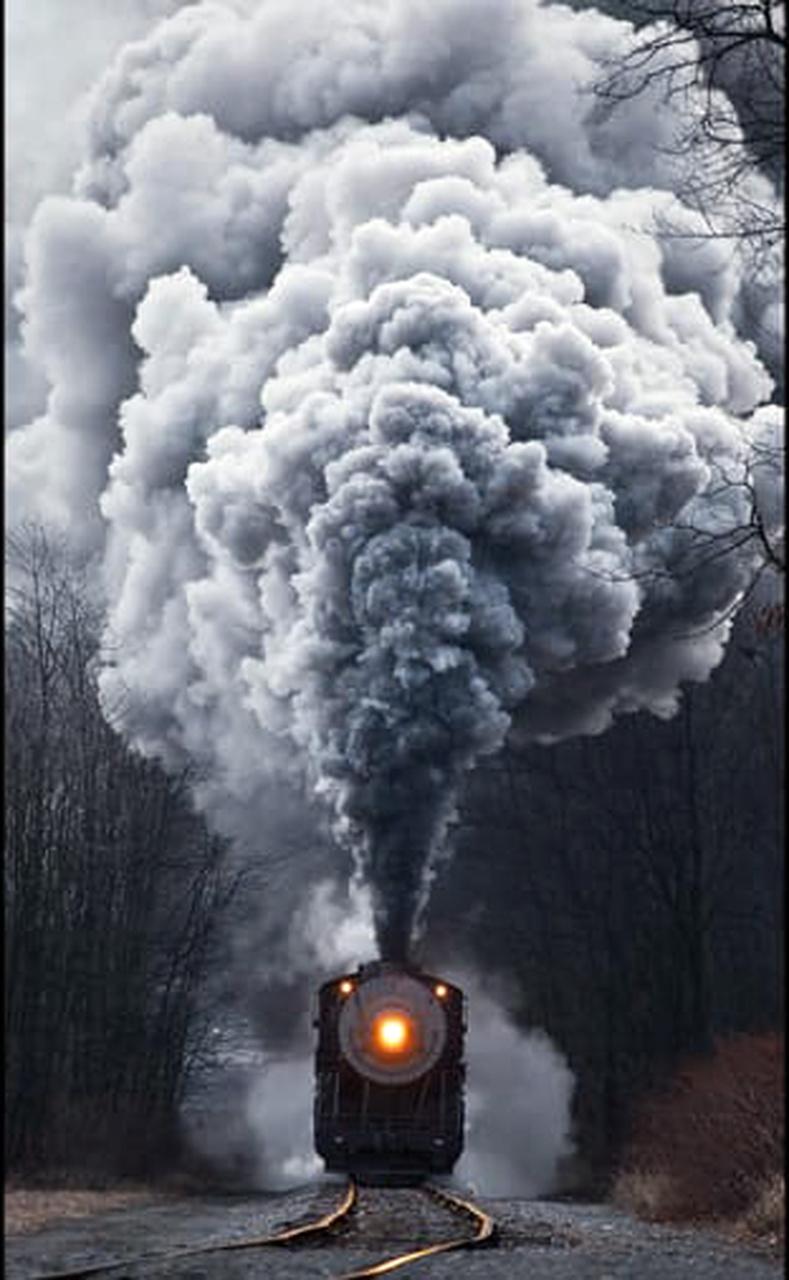 تنوع قطارهای دیزلی