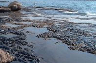 پایش سلامت گردشگران در سواحل دریا