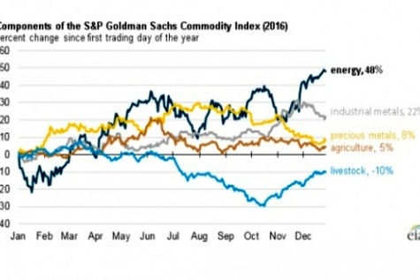 Energy commodity prices rose more than other sectors in ۲۰۱۶