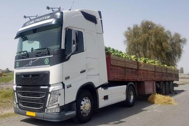 حمل بیش از 445 هزار تن محصولات کشاورزی فصلی از جنوب استان سیستان و بلوچستان