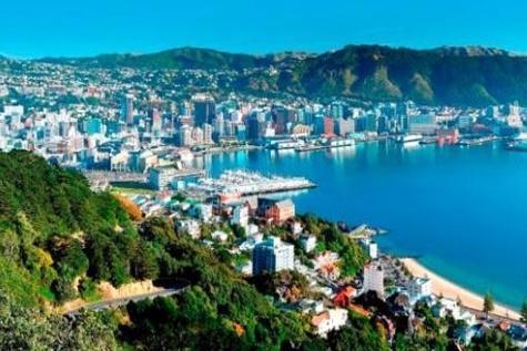 TGH seeks world class port operator for Ruakura Inland Port