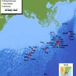 Shell shuts operation in four Gulf of Mexico oil platforms