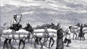 روایتی از کاروانهای حمل جنازه که قرنها پیش، از مقاصد دور عازم مشهد میشدند