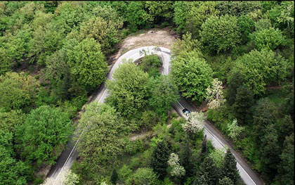 نصب 68 تابلوی اخطار ویژه جنگلهای گلستان