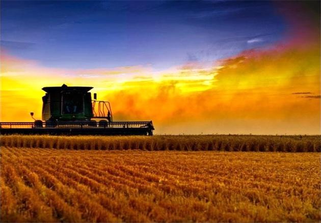 صدور کارت سوخت برای مالکان ماشینهای کشاورزی ۳ استان آغاز شد