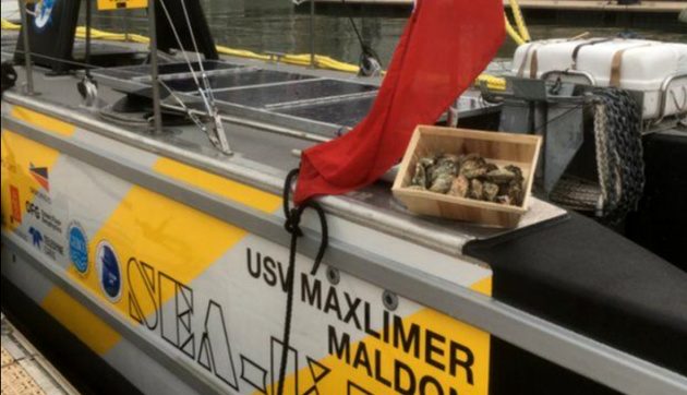 Autonomous vessel makes first ever commercial crossing of North Sea