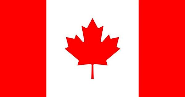 درخواست کانادا از ایران برای ارسال جعبه سیاه به فرانسه