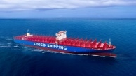 COSCO Shipping International (Singapore) Net Profit Down By Almost 70%