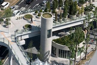 وقتی یک پل هوایی چندین کیلومتری و متروکه به باغچه هوایی در شهر سئول تبدیل می شود