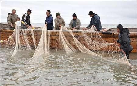 ممنوعیت صید ماهی کیلکا از دریای خزر