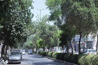 با ایجاد خیابان مشکلات ترافیکی حل نمیشود