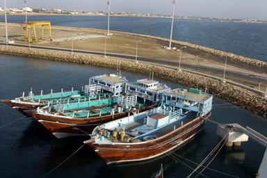 توقف فعالیت شناورهای سافاری بوشهر به 40 روز رسید