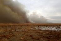 وقوع آتش سوزی در تالاب میقان/ آتشسوزی منجر به افزایش پارامترهای آلودگی هوا در اراک شد