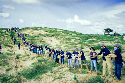 چینیها اینگونه  با «دیوار سبز»، بیابان را جنگل میکنند