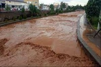 تبریز و اردبیل پس از باران؛ خودروها را آب برد