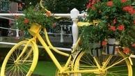 آیا آلودگی هوا تأثیرات مثبت پیادهروی و دوچرخهسواری را از بین می برد؟